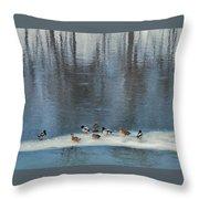 Safehaven   Indiana   Winter Throw Pillow