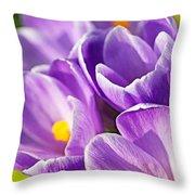Saffron Flowers. Throw Pillow