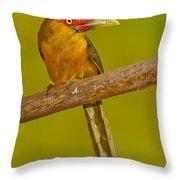 Saffron Toucanet Throw Pillow