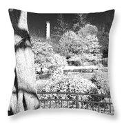 Sagamihara Asamizo Park 15d Throw Pillow