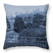 Sagamihara Asamizo Park 16e Throw Pillow
