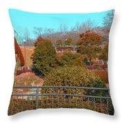 Sagamihara Asamizo Park 16f Throw Pillow