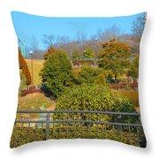 Sagamihara Asamizo Park 16h Throw Pillow