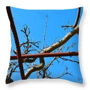 Sagamihara Asamizo Park 17f Throw Pillow