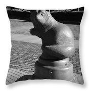 Sagamihara Asamizo Park 9a Throw Pillow