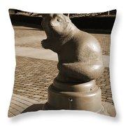 Sagamihara Asamizo Park 9b Throw Pillow