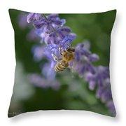Sage Bee Throw Pillow