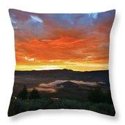 Sage Grass At Sun Up Throw Pillow