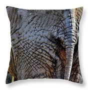 Saggy Baggy Throw Pillow by Benjamin Yeager