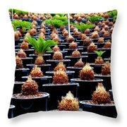 Sago Abstract Throw Pillow