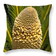 Sago Palm Seed Pod Throw Pillow