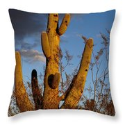 Saguaro 2 Throw Pillow