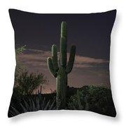 Saguaro At Sunset Throw Pillow