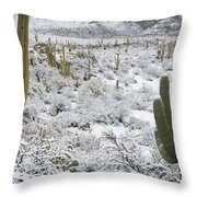 Saguaro Cacti After Rare Desert Throw Pillow