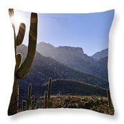 Saguaro Cacti And Catalina Mountains Throw Pillow