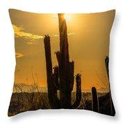 Saguaro Cactus 3 Throw Pillow