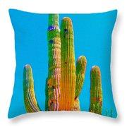 Saguaro Colors Throw Pillow