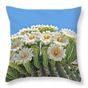 Saguaro Flowers On Top Throw Pillow