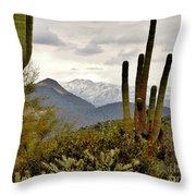 Saguaro Sentinels Throw Pillow