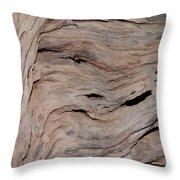 Saguaro Skeleton Throw Pillow