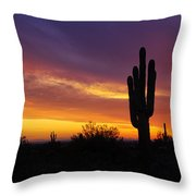 Saguaro Sunset II  Throw Pillow