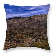 Saguaro View No.1 Throw Pillow