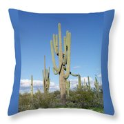Saguaros With Green Grass Throw Pillow