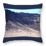 Sahara Desert 16 Throw Pillow