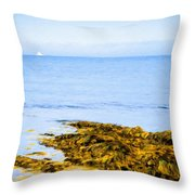 Sailboat Off The Ovens Throw Pillow