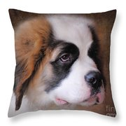 Saint Bernard Puppy Throw Pillow by Jai Johnson