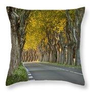 Saint Remy Trees Throw Pillow