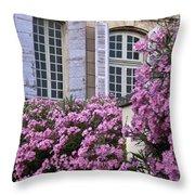 Saint Remy Windows Throw Pillow