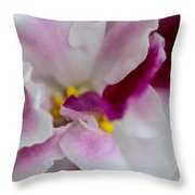 Saintpaulia Throw Pillow