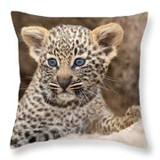 Salayexe's Cub Throw Pillow
