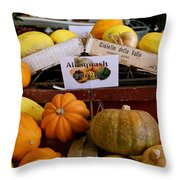 San Joaquin Valley Squash Display Throw Pillow