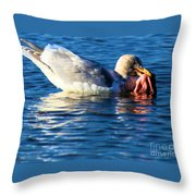 Salmon Delight Throw Pillow