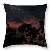 Salmon Sunset Throw Pillow