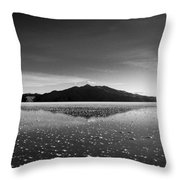 Salt Cloud Reflection Black And White Throw Pillow
