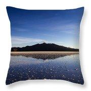 Salt Cloud Reflection Throw Pillow