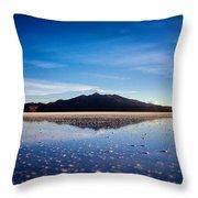 Salt Cloud Reflection Framed Throw Pillow