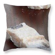 Salt Cod Fish Throw Pillow