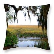 Salt Creek 2 Throw Pillow