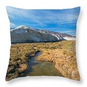 Salt Creek Death Alley National Park Throw Pillow