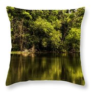 Salt Creek In August Throw Pillow