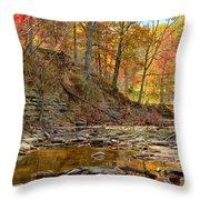 Salt Creek Throw Pillow