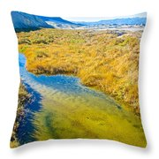 Salt Creek Near Salt Creek Trail In Death Valley National Park-california Throw Pillow