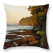 Salt Creek Shore Line Throw Pillow