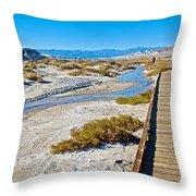 Salt Creek Trail Boardwalk In Death Valley National Park-california  Throw Pillow