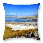 Salt Lake Utah Throw Pillow