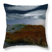 Salt Marsh At The Edge Of The Sea Throw Pillow by RC DeWinter